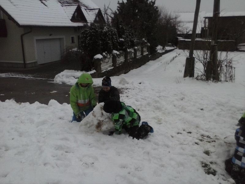 Sneg 20